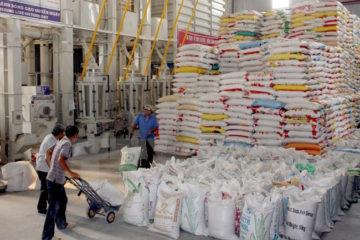 Các điều kiện kinh doanh, xuất khẩu gạo chính thức được bãi bỏ tạo thuận lợi cho doanh nghiệp.